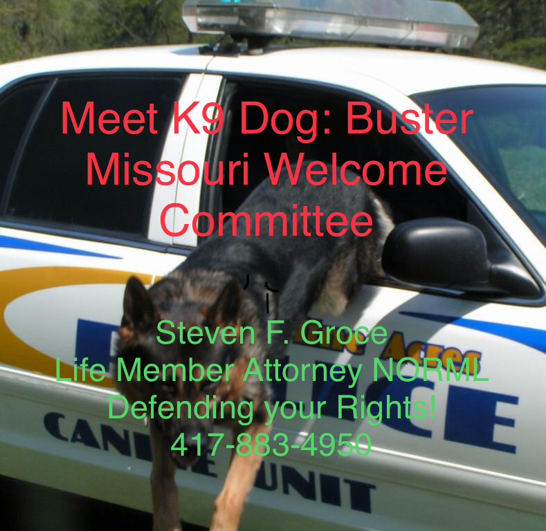 Meet K9 Dog: Buster, Missouri Welcome Committee. Call Now, Steven Groce, Attorney, NORML, Defending your Rights!